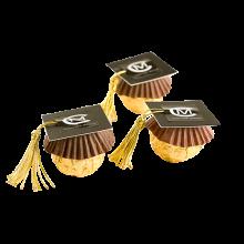 Toca de absolvire
